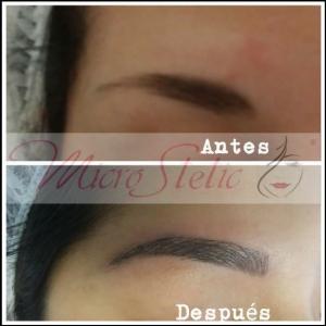 fotos-micropigmentación-cejas-pelo-a-pelo-centros-opiniones